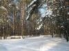 Зима в Монино (3)